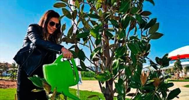 Işın Karaca'dan manolya ağacı