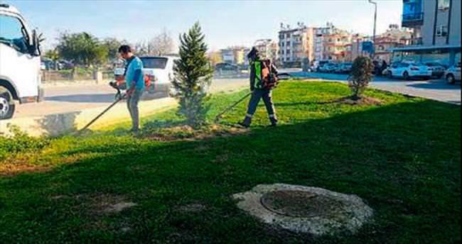 Kepez'in bahçeleri için bakım zamanı