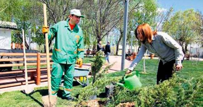 Çankaya'dan yetişkinler bahçıvanlık öğreniyor