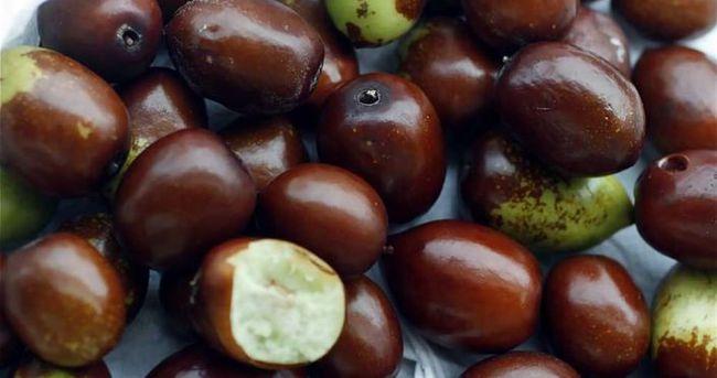 Soğuk algınlığına ilaç gibi gelen besinler