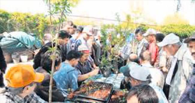 Bahçıvanlığa bir günde 150 kişi başvurdu