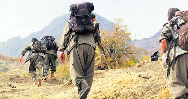 PKK'nın 2 sözde lideri öldürüldü
