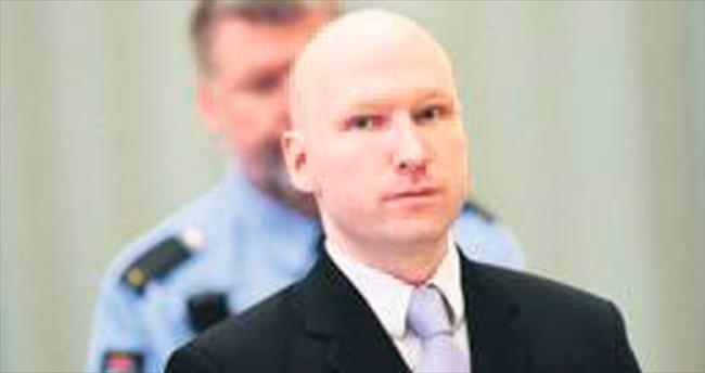 Breivik'i haklı buldular