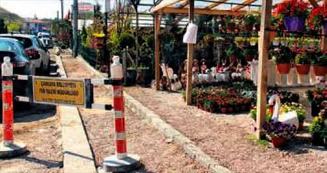 Sera bölgesi çiçek pazarına dönüşüyor