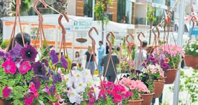 Bayındır'da çiçek festivali başlıyor