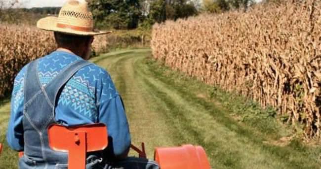 Genç çiftçiler hibeye koştu