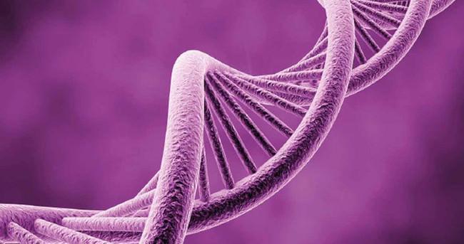 GTÜ Genetik Günleri