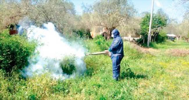 Melih ABİ: Sinek böcek nefes aldırmıyor mücadele yok