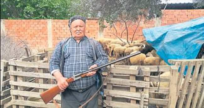 Saldırgan hayvana karşı silahlı nöbet