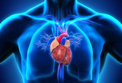 Aort yırtılması ani ölüm getirebilir