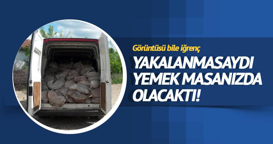 90 bin TL'lik kaçak et, çevirmeye takıldı