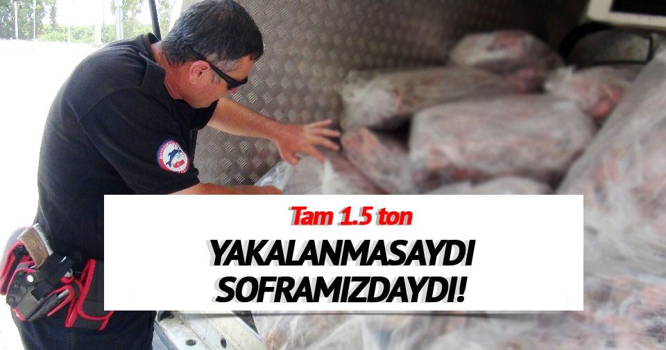Mersin'de kaçak et operasyonu!