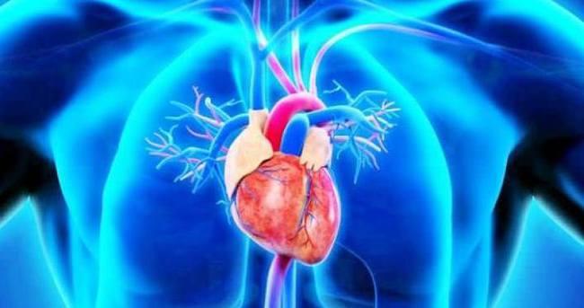 Aort damarı için düzenli kontrol şart