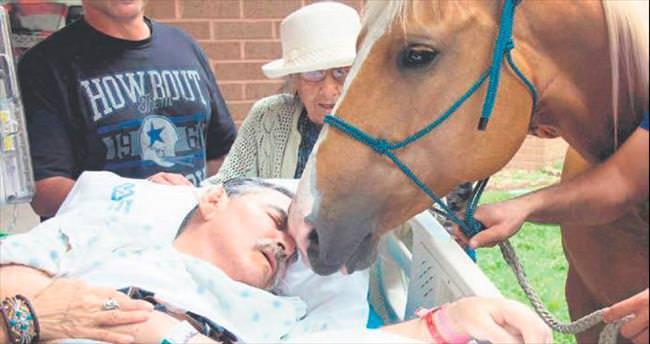 Ölüm döşeğinde atlarıyla buluştu, ağladı, ağlattı...