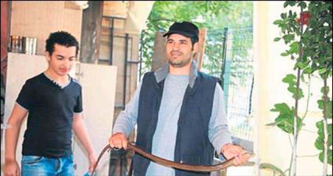Basmane'de yılan paniği yaşandı