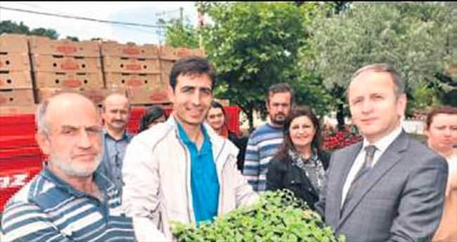 'Şekerotu' projesi Kestel'de başladı