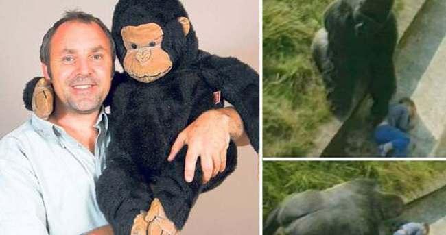 Goril kafesine düşen adam konuştu