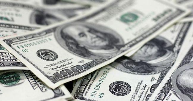 Döviz rezervi 263 milyon dolar arttı