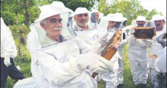 Pendikli 47 emekliye 235 arı kovanı