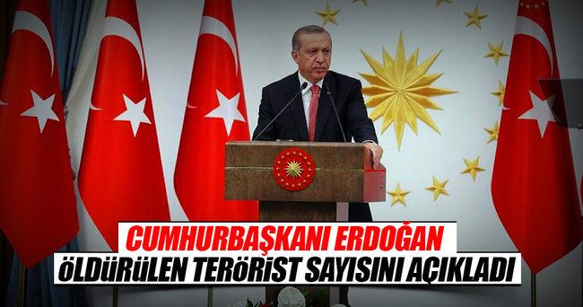 Cumhurbaşkanı Erdoğan: 7 bin 600 terörist etkisiz hale getirildi