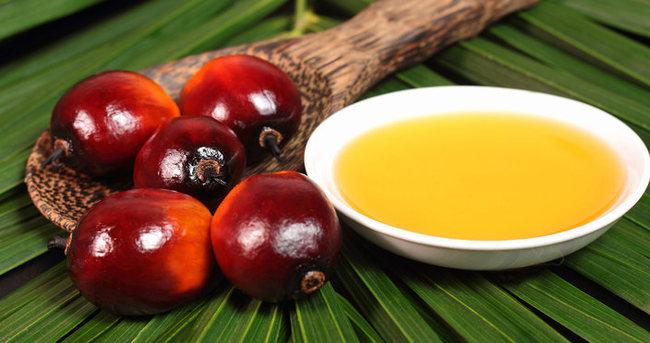 Sağlıkta yeni tehdit: Palmiye yağı