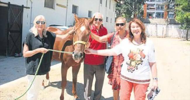 Yarış atlarını kesip sucuk yapmışlar!