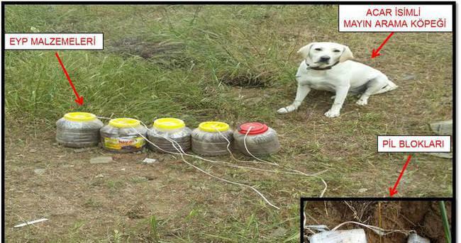 Bitlis'te 75 kilogram patlayıcı imha edildi