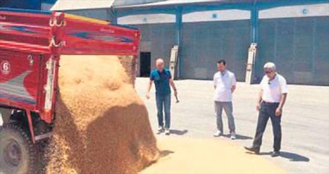 Polatlı'da ilk mahsul buğdayı satıldı