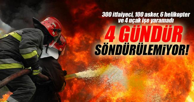 O ülkede orman yangını 4 gündür söndürülemedi!