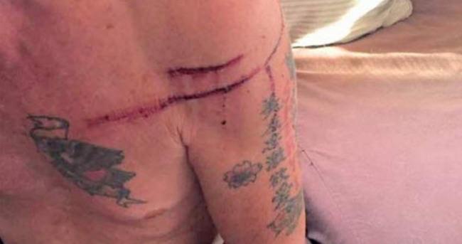 Eski boksör kendine saldıran ayıyı dövdü