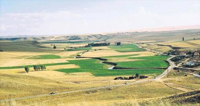 Tarım alanları geli��miş ülkelerin kontrolüne geçti