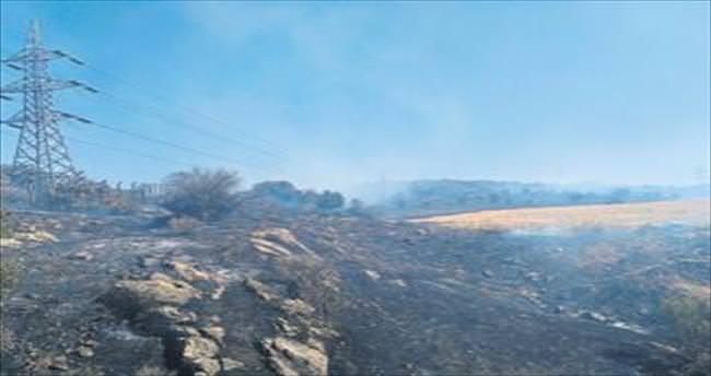 Nemrut sanayi bölgesinde yangın