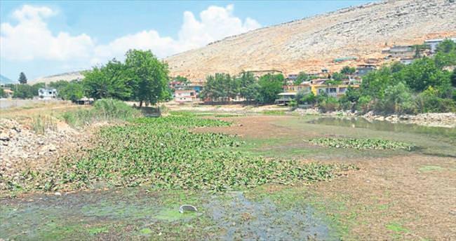 Kahramanmaraş'ta kuraklık tehlikesi