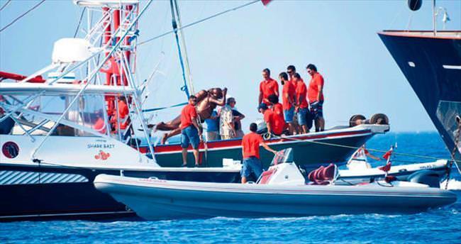 Mustafa Koç'u denizde andılar