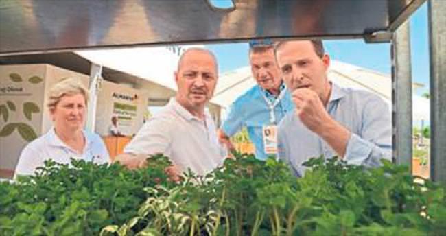 Alman müsteşar EXPO'ya davet etti