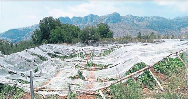 Erdemli'yi dolu vurdu 1,5 milyon lira zarar var