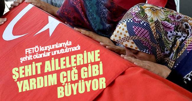 Türkiye şehit ailelerine yardım çığ gibi büyüyor