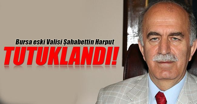 Şahabettin Harput tutuklandı!