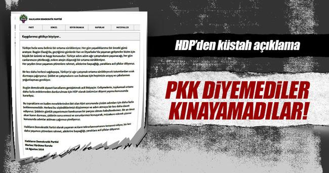 HDP, PKK diyemedi
