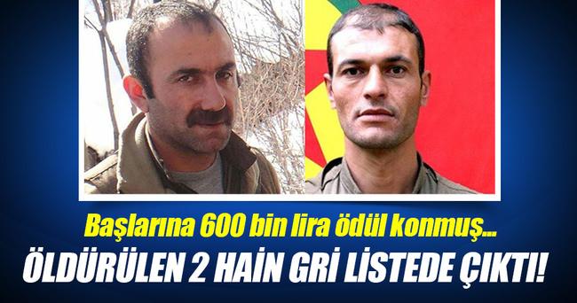 Öldürülen 2 teröristin gri listede olduğu ortaya çıktı!