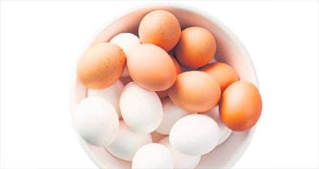 Üç yıldızlı tek yumurta Gordo