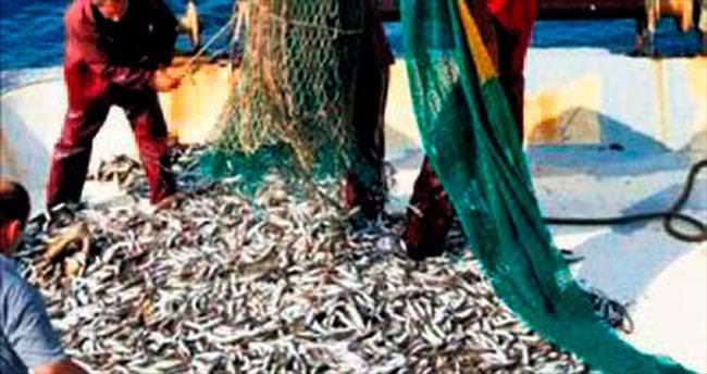 Bu yıl balık sezonu bereketli geçecek