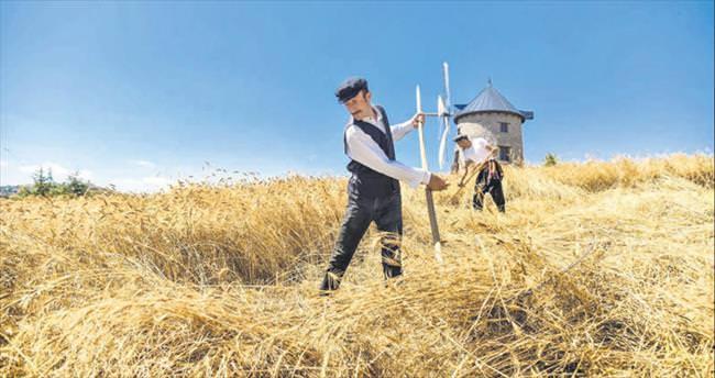 Altınköy'de hasat bereketi