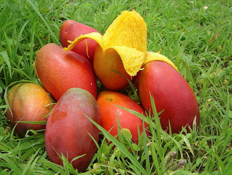 Meyvelerin kraliçesi mangonun vücudumuzdaki şaşırtan etkisi