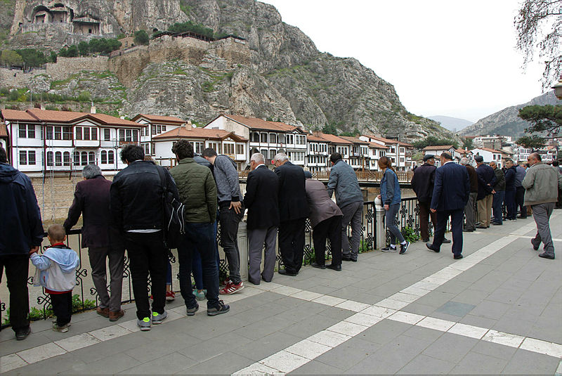 Yeşilırmak'ta ölü balıklar kıyıya vurdu, AK Partili Başkan telefonla bilgi aldı