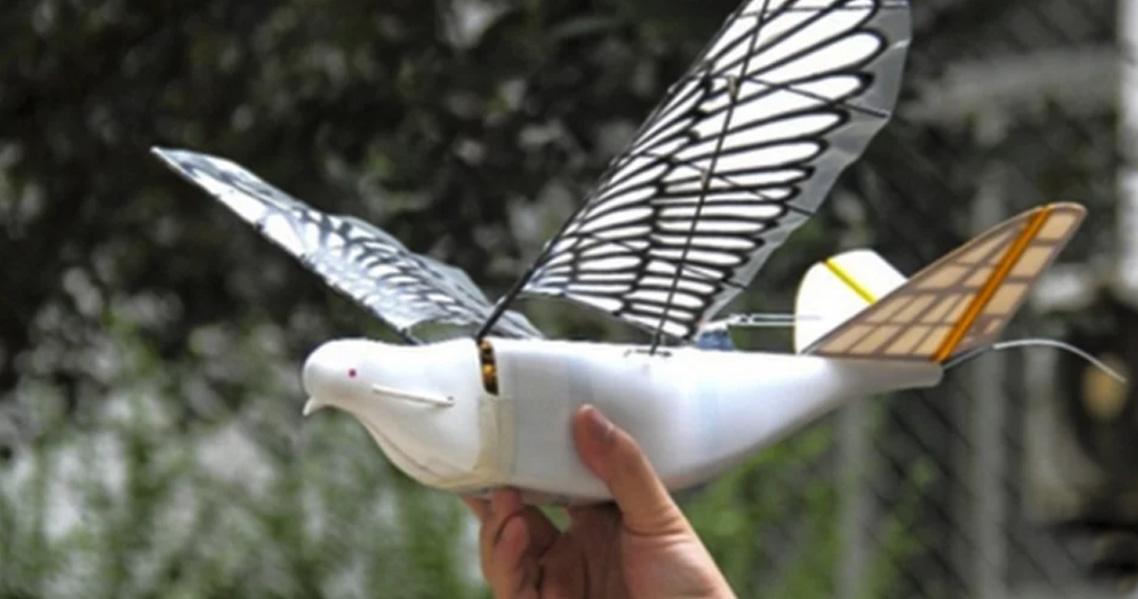 Yeni nesil robot kuşlar göreve başladı
