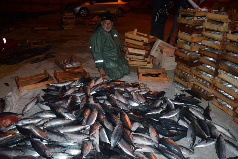 Karadeniz'de son 10 yılın en bereketli palamut sezonu!