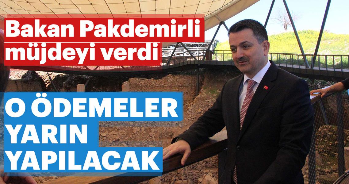 Son dakika haberi: Bakan Pakdemirli'den destek ödemesi müjdesi