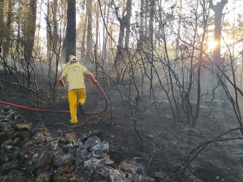 Mangaldan çıkan yangın 7 hektarlık ormanlık alanı yok etti ...