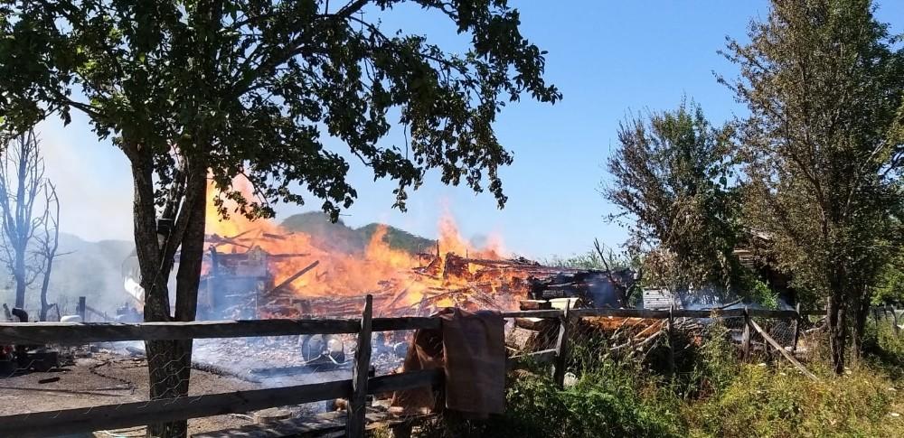 Kastamonu'da çıkan yangında 3 hayvan telef oldu